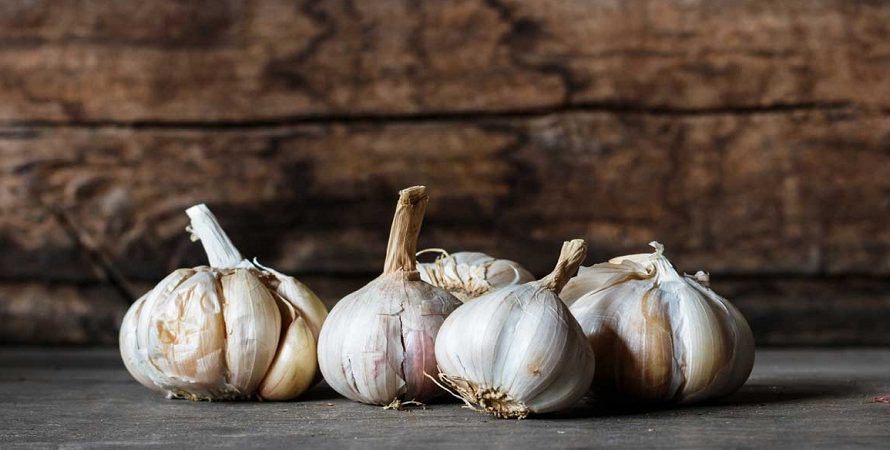 Proven Benefits of Garlic for Health