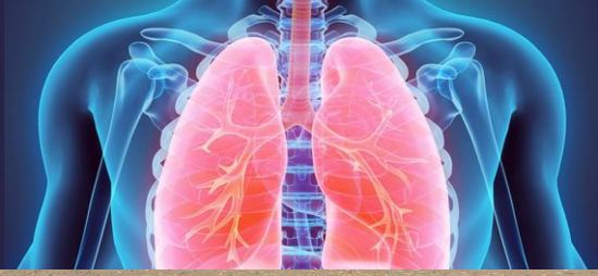 Improves lung health